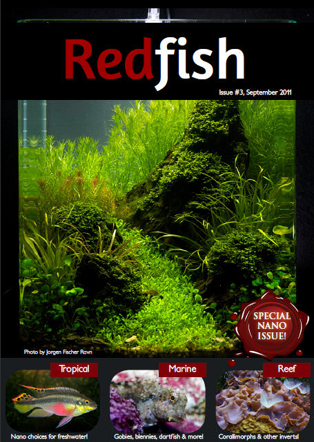 Red Fish Magazine Nano Special